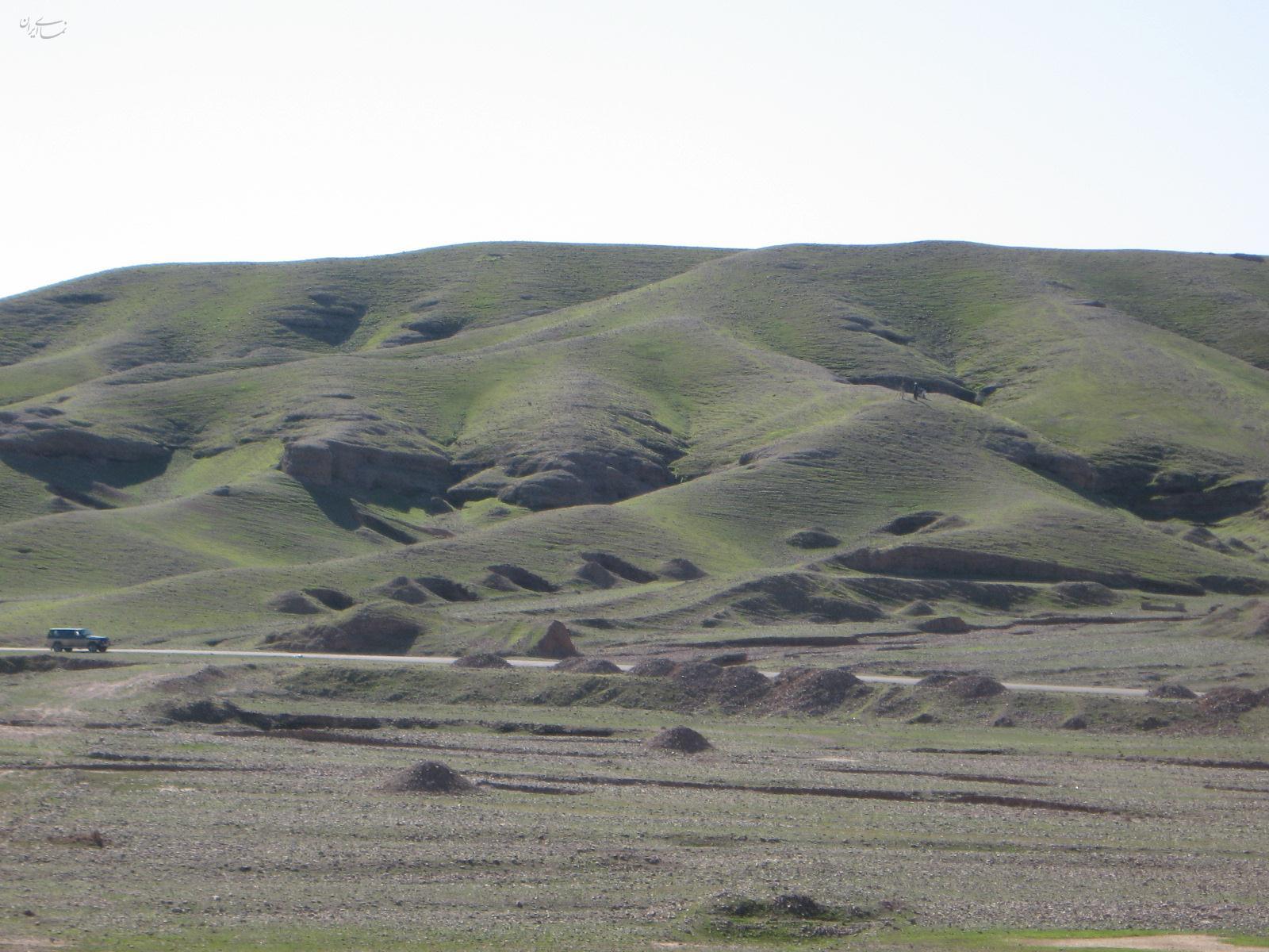 تپه علی کش